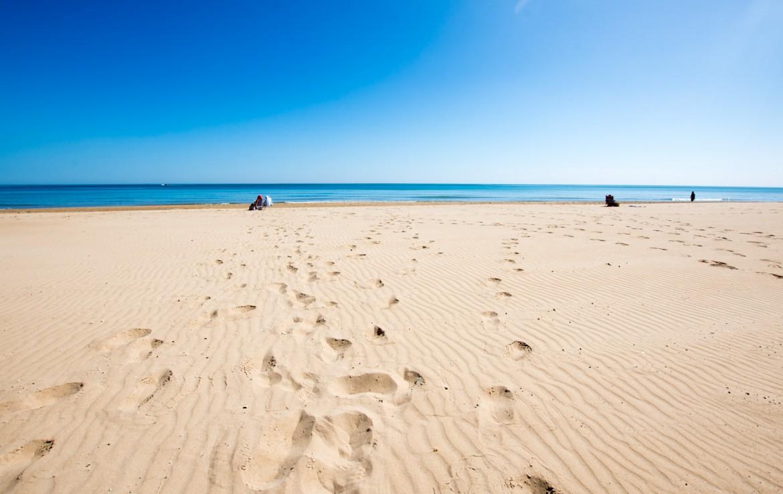 vivienda en la playa de Guardamar del Segura